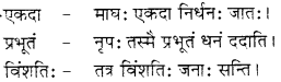 RBSE Solutions for Class 12 Sanskrit विजेत्र Chapter 9 महाकविः माघः 8