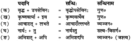 RBSE Solutions for Class 12 Sanskrit Chapter 3 मानवधर्मः 1