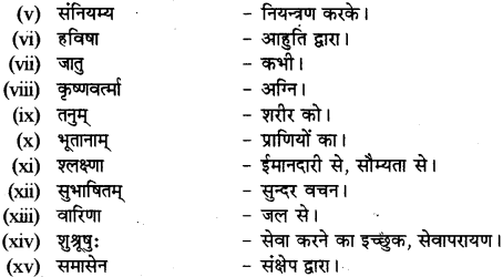 RBSE Solutions for Class 12 Sanskrit Chapter 3 मानवधर्मः 10