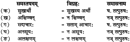 RBSE Solutions for Class 12 Sanskrit Chapter 3 मानवधर्मः 4