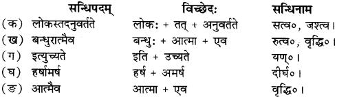 RBSE Solutions for Class 12 Sanskrit Chapter 4 गीतामृतम् 2