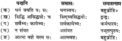 RBSE Solutions for Class 12 Sanskrit Chapter 4 गीतामृतम् 3