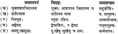 RBSE Solutions for Class 12 Sanskrit Chapter 4 गीतामृतम् 4