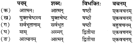 RBSE Solutions for Class 12 Sanskrit Chapter 4 गीतामृतम् 5