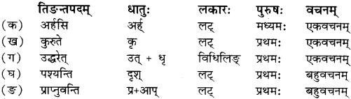 RBSE Solutions for Class 12 Sanskrit Chapter 4 गीतामृतम् 6