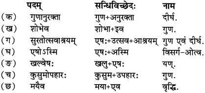 RBSE Solutions for Class 12 Sanskrit Chapter 6 चारुत्वं चारुदत्तस्य 1