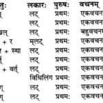 RBSE Solutions for Class 9 Sanskrit सरसा Chapter 14 कार्यं खलु साधयेयम् 1