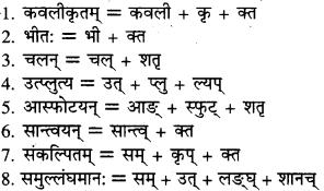 RBSE Solutions for Class 9 Sanskrit सरसा Chapter 14 कार्यं खलु साधयेयम् 3
