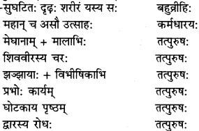 RBSE Solutions for Class 9 Sanskrit सरसा Chapter 14 कार्यं खलु साधयेयम् 4