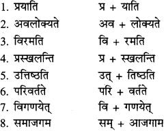 RBSE Solutions for Class 9 Sanskrit सरसा Chapter 14 कार्यं खलु साधयेयम् 8