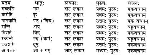 RBSE Solutions for Class 9 Sanskrit सरसा Chapter 4 संस्कृतगौरवम् 1
