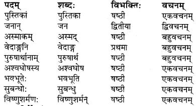 RBSE Solutions for Class 9 Sanskrit सरसा Chapter 4 संस्कृतगौरवम् 2