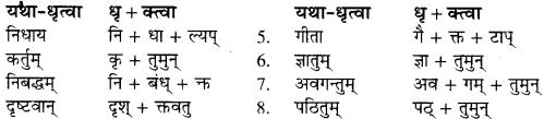 RBSE Solutions for Class 9 Sanskrit सरसा Chapter 4 संस्कृतगौरवम् 3