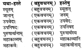 RBSE Solutions for Class 9 Sanskrit सरसा Chapter 4 संस्कृतगौरवम् 6