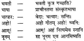 RBSE Solutions for Class 9 Sanskrit सरसा Chapter 4 संस्कृतगौरवम् 7