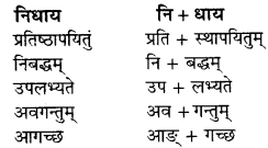 RBSE Solutions for Class 9 Sanskrit सरसा Chapter 4 संस्कृतगौरवम् 8