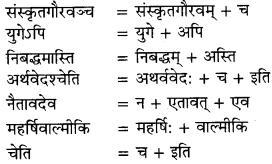 RBSE Solutions for Class 9 Sanskrit सरसा Chapter 4 संस्कृतगौरवम् 9