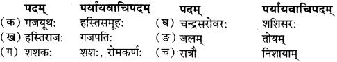 RBSE Solutions for Class 9 Sanskrit सरसा Chapter 5 शश-गजराज कथा 3