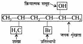 RBSE Solutions for Class 11 Chemistry Chapter 12 कार्बनिक रसायन: कुछ मूल सिद्धान्त और तकनीकें img 132