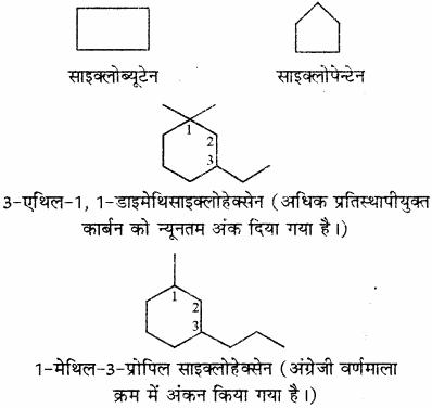 RBSE Solutions for Class 11 Chemistry Chapter 12 कार्बनिक रसायन: कुछ मूल सिद्धान्त और तकनीकें img 156