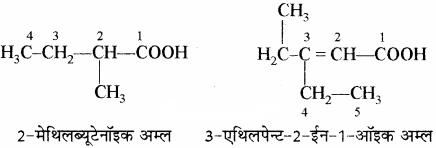 RBSE Solutions for Class 11 Chemistry Chapter 12 कार्बनिक रसायन: कुछ मूल सिद्धान्त और तकनीकें img 164