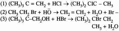 RBSE Solutions for Class 11 Chemistry Chapter 12 कार्बनिक रसायन: कुछ मूल सिद्धान्त और तकनीकें img 19