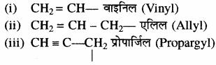 RBSE Solutions for Class 11 Chemistry Chapter 12 कार्बनिक रसायन: कुछ मूल सिद्धान्त और तकनीकें img 101