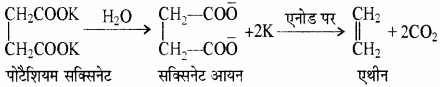 RBSE Solutions for Class 11 Chemistry Chapter 13 हाइड्रोकार्बन img 11