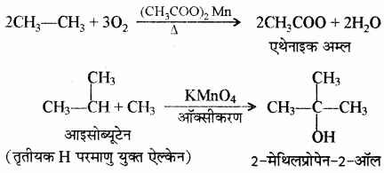 RBSE Solutions for Class 11 Chemistry Chapter 13 हाइड्रोकार्बन img 110