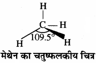 RBSE Solutions for Class 11 Chemistry Chapter 13 हाइड्रोकार्बन img 17