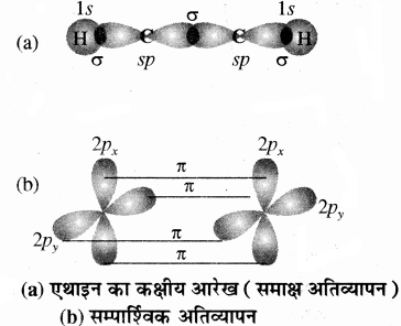 RBSE Solutions for Class 11 Chemistry Chapter 13 हाइड्रोकार्बन img 37