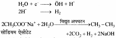 RBSE Solutions for Class 11 Chemistry Chapter 13 हाइड्रोकार्बन img 61