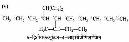 RBSE Solutions for Class 11 Chemistry Chapter 13 हाइड्रोकार्बन img 80