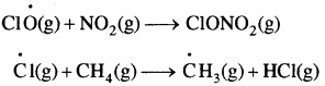 RBSE Solutions for Class 11 Chemistry Chapter 14 पर्यावरणीय रसायन img 21