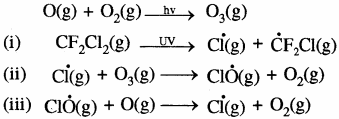 RBSE Solutions for Class 11 Chemistry Chapter 14 पर्यावरणीय रसायन img 9