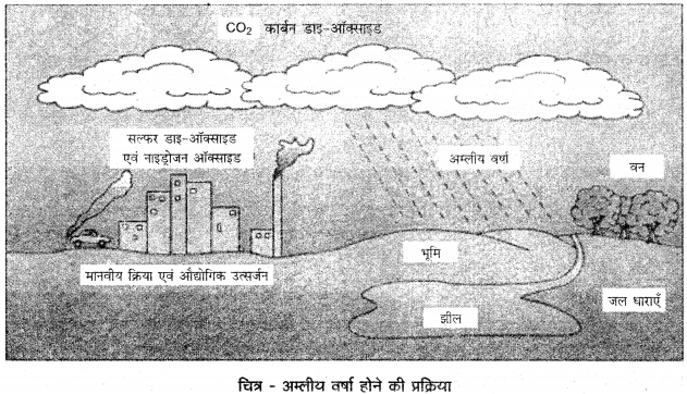 RBSE Solutions for Class 12 Geography Chapter 12 पर्यावरणीय समस्याएँ एवं समाधान img-2