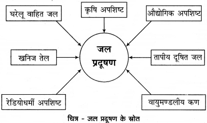 RBSE Solutions for Class 12 Geography Chapter 12 पर्यावरणीय समस्याएँ एवं समाधान img-4
