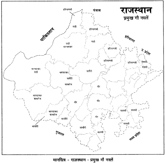 RBSE Solutions for Class 12 Geography Chapter 24 राजस्थान: खनिज व उद्योग img-2
