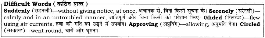 High Maharajah RBSE Class 10 English Notes 12