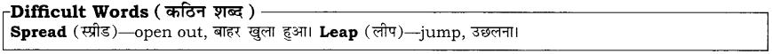 High Maharajah RBSE Class 10 English Notes 14