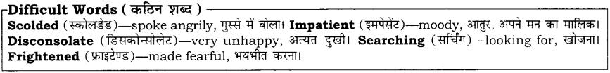 High Maharajah RBSE Class 10 English Notes 16