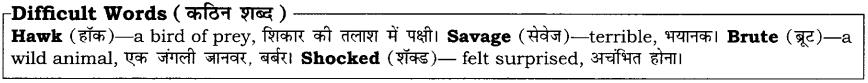 High Maharajah RBSE Class 10 English Notes 17
