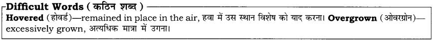 High Maharajah RBSE Class 10 English Notes 22