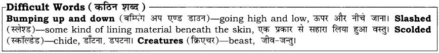 High Maharajah RBSE Class 10 English Notes 25
