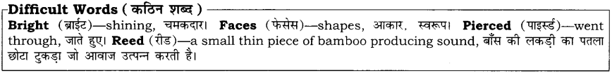 High Maharajah RBSE Class 10 English Notes 3