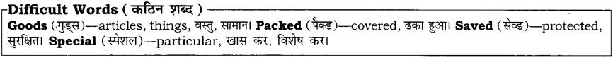 High Maharajah RBSE Class 10 English Notes 4