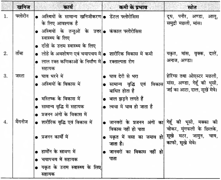 RBSE Solutions for Class 11 Home Science Chapter 14 भोजन के पोषक तत्व-सूक्ष्म मात्रिक-8