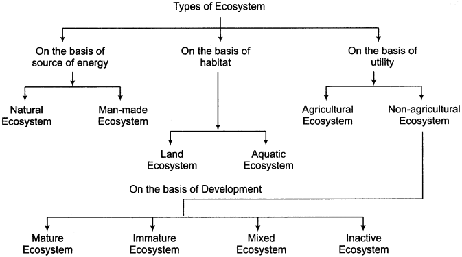 RBSE Solutions for Class 11 Physical Geography Chapter 22 Concept of Ecosystem img-1