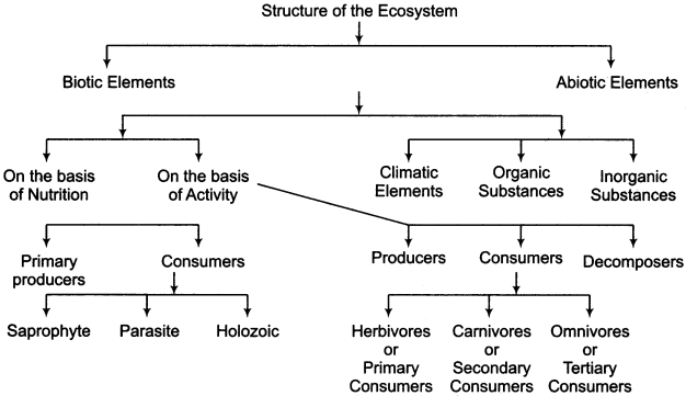 RBSE Solutions for Class 11 Physical Geography Chapter 22 Concept of Ecosystem img-2