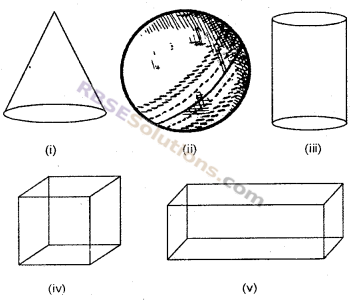 RBSE Solutions for Class 6 Maths Chapter 10 त्रिविमीय आकारों की समझ Ex 10.1 image 1